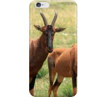 Topi Antelope iPhone Case/Skin