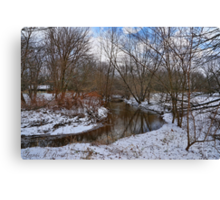Winter In The Garden State Canvas Print