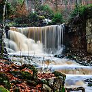 The falls by Mark Williams