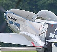 Mustang Taxiing by Mark  Jones