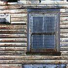 Derelict house by Roz McQuillan