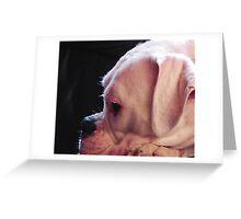 Lilli Greeting Card