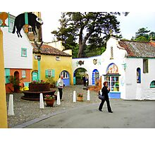 portmeirion 2 Photographic Print