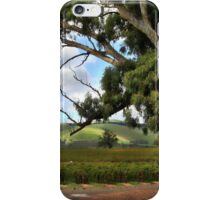 Jacobs Winery, South Australia iPhone Case/Skin