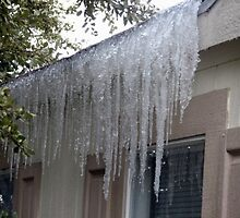 Icicles....cold... by wahumom