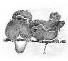 Feathered Friends by georgiegirl