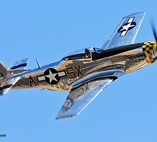 Bare Metal P-51 by gfydad
