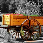*Flower Wagon* by DeeZ (D L Honeycutt)