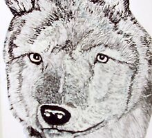 TIMBER WOLF by GEORGE SANDERSON