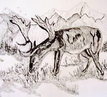 ROE DEER by GEORGE SANDERSON