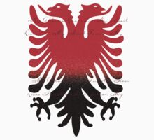 Eagle Blazon Coat of Arms Albania by Zehda