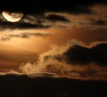 Setting Sun by Anima Fotografie