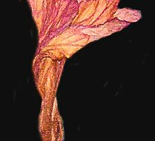 Wilted Flower ; Element Of Clay by POETRY508