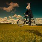 White Rabbit by Neil Carey