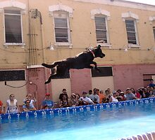 Jump by PPPhotoArt