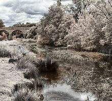 Coal River - Tasmania by Stephen Kilburn