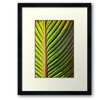 Glowing Green Framed Print