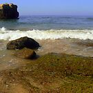 Albufeira/Praia dos Aveiros Beach by mariarty