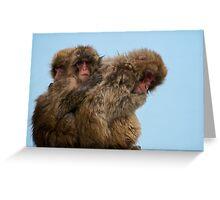 Snow Monkeys Greeting Card