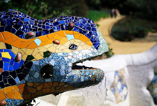 Gaudi's Lizard by Alison Cornford-Matheson