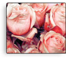 Roses for her Canvas Print