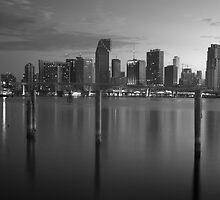 Miami Skyline by Denis Wagovich