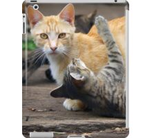 Playtime - Cats and Kittens iPad Case/Skin