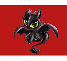 Baby Toothless Photographic Print