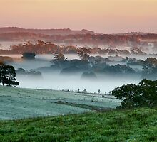 Morning Mist - Nairne by LeeoPhotography