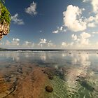 Niue Reef - 2 by zoopita