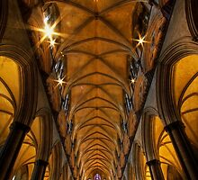 Salisbury Cathedral by igotmeacanon