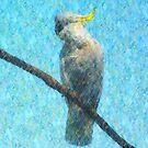 Cockatoo III by Imageo