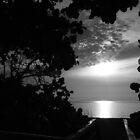 The Boardwalk by Michael Damanski