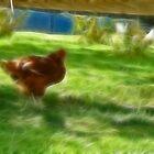Frac Chicken  by PixelChez