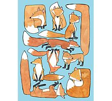 Foxes Collage Photographic Print