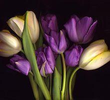 Purple and CreamTulip Bouquet by Barbara Wyeth