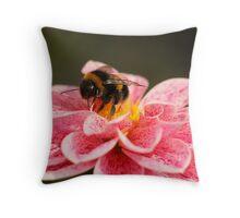Dahlia & Bee Throw Pillow