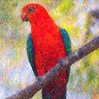King Parrot II by Imageo