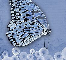 Blue on Blue by Bonnie T.  Barry