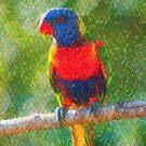 Rainbow Lorikeet I by Imageo