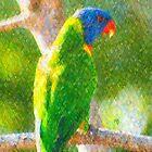 Rainbow Lorikeet II by Imageo