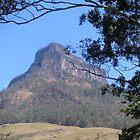 Mt Lindsay by Ian McKenzie