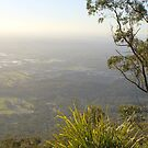 On top of mount dandenong by Ajmdc