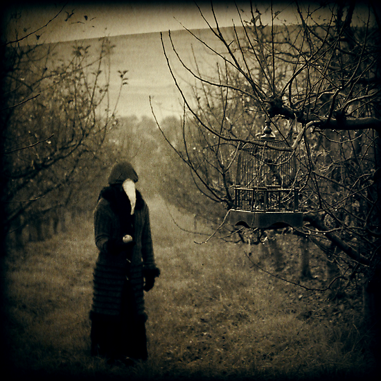 Come, eat from my orchard... by James McKenzie