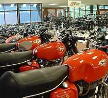 National Motorcycle Museum - 7 by PhotogeniquE IPA