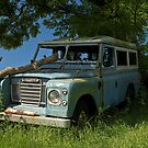 Lonely Landy by James0541