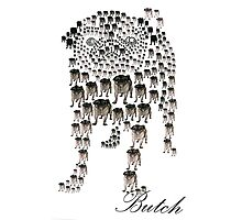 Butch Photographic Print