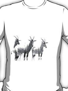 Three Topi Antelope T-Shirt