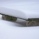 Snow Bench - After The Storm by Fay270