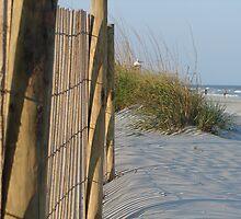 Folly Beach by Linda Fields